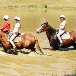 Boomerang Holiday Ranch